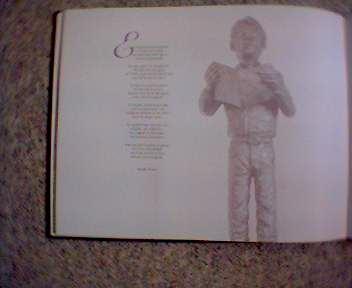 Boek Rob Cerneüs 8