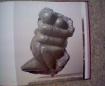 Boek Rob Cerneüs 5